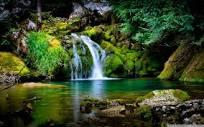 Livving water flows
