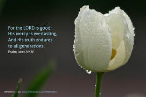 the Goodness of the Lord