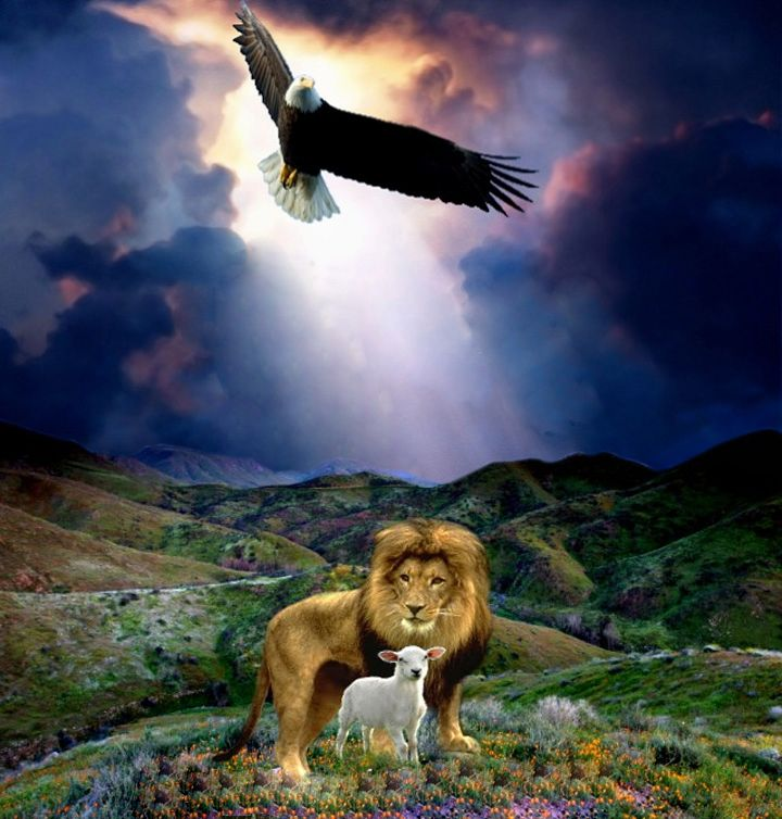 Lion Lamb Eagle